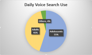 people who use voice search